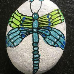 Steine bemalen - Libelle